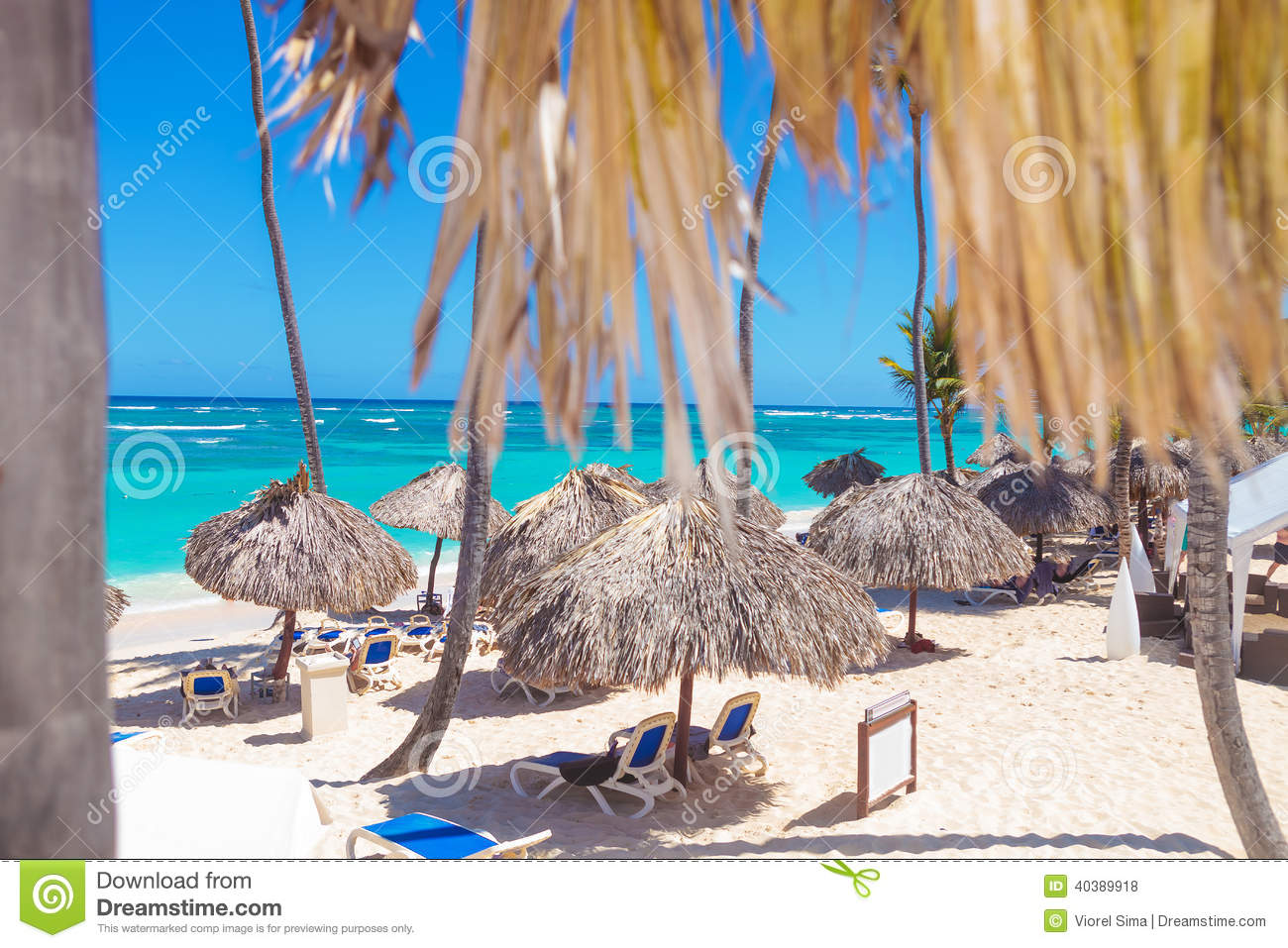 beach with straw umbrellas in punta cana stock photo. Black Bedroom Furniture Sets. Home Design Ideas