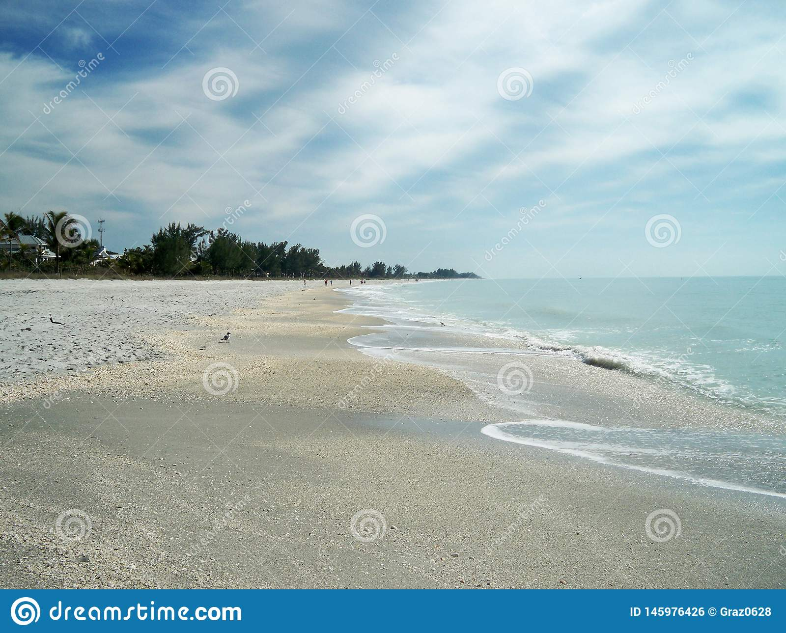 Beach on a sunny day with blue water.