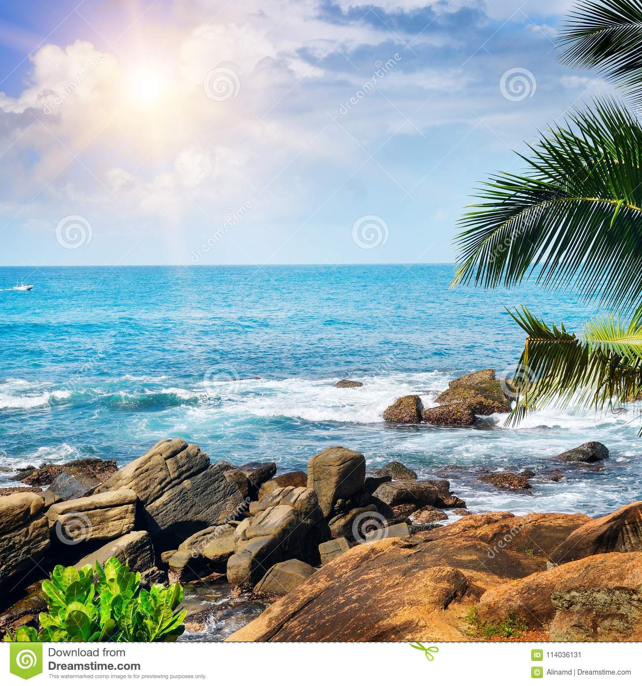 Tropical Beach And Peaceful Ocean: Beach Tropical Ocean , Palm Trees And Sun. Stock Image