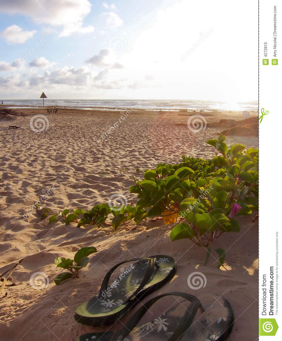 Beach with two shoes