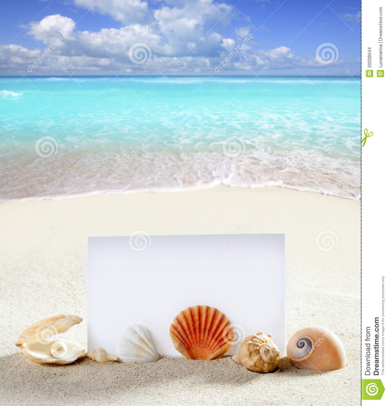 Tropical Backgrounds Clipart PC Most