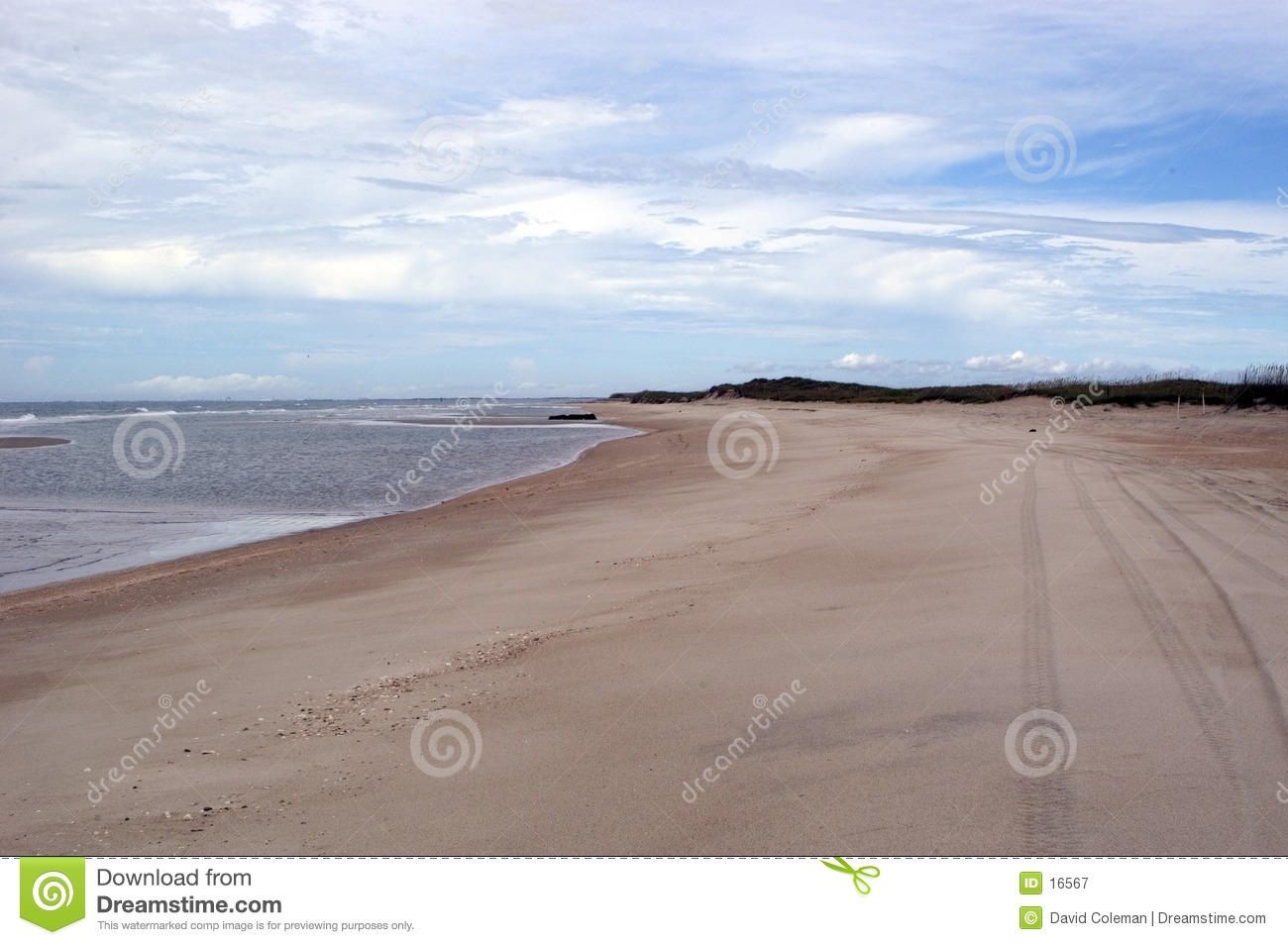 Beach View with Tire Tracks