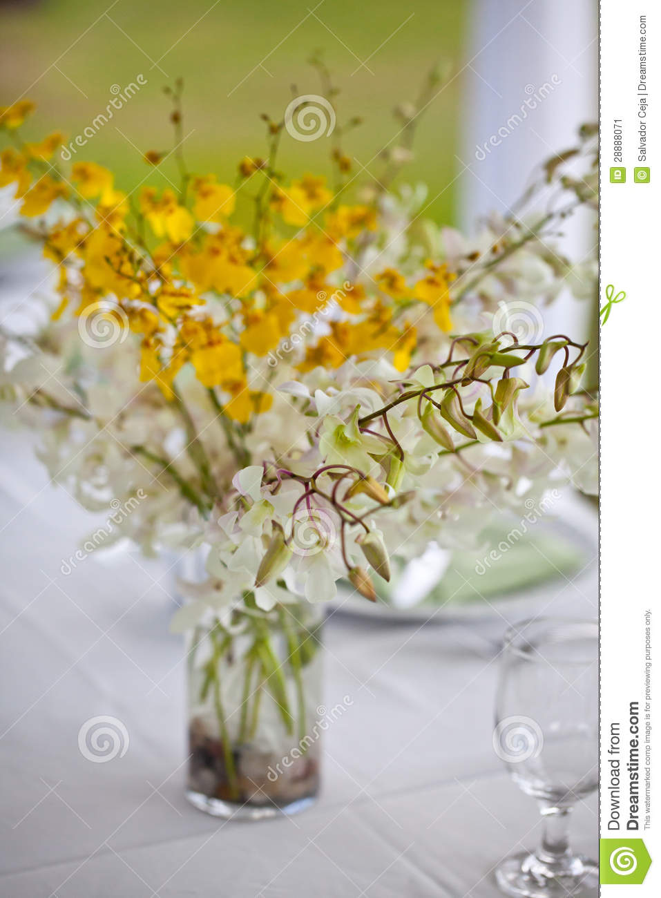 Beach Wedding Decor Table Setting And Flowers Stock Image