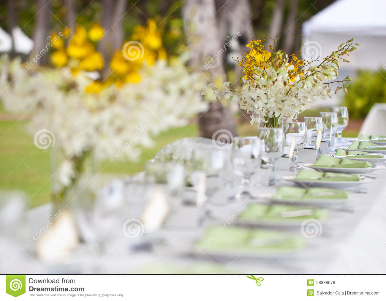Beach wedding decor table setting and flowers stock image image of beach wedding decor table setting and flowers chair beautiful junglespirit Gallery