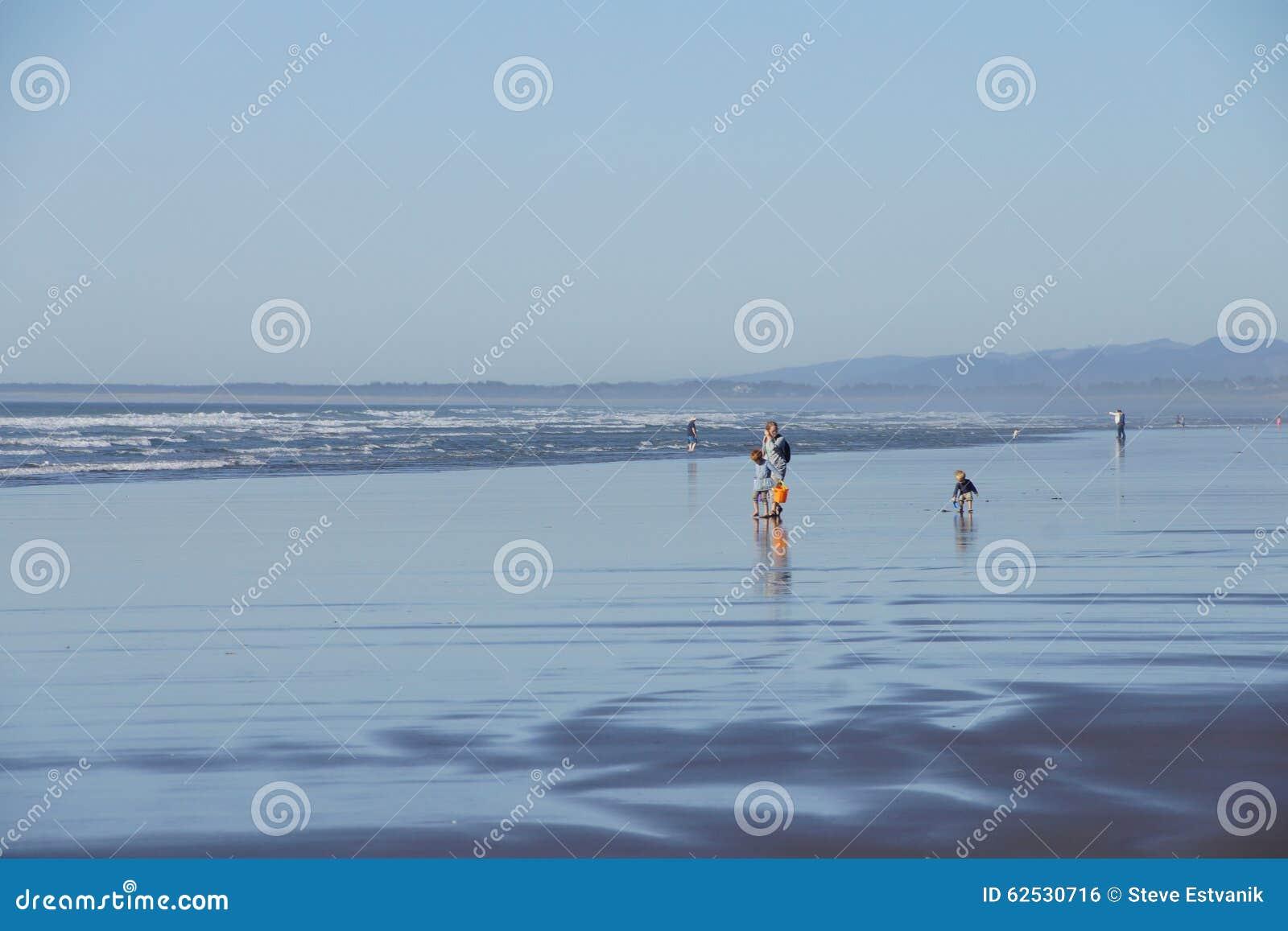 Beachcombers исследуют песчаный пляж