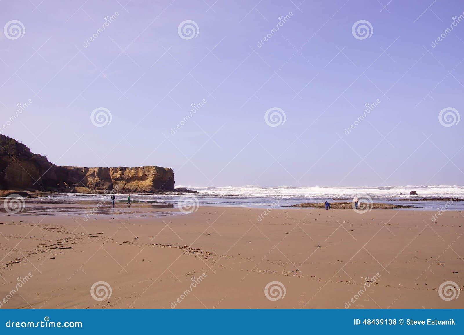 Beachcombers ищут берег