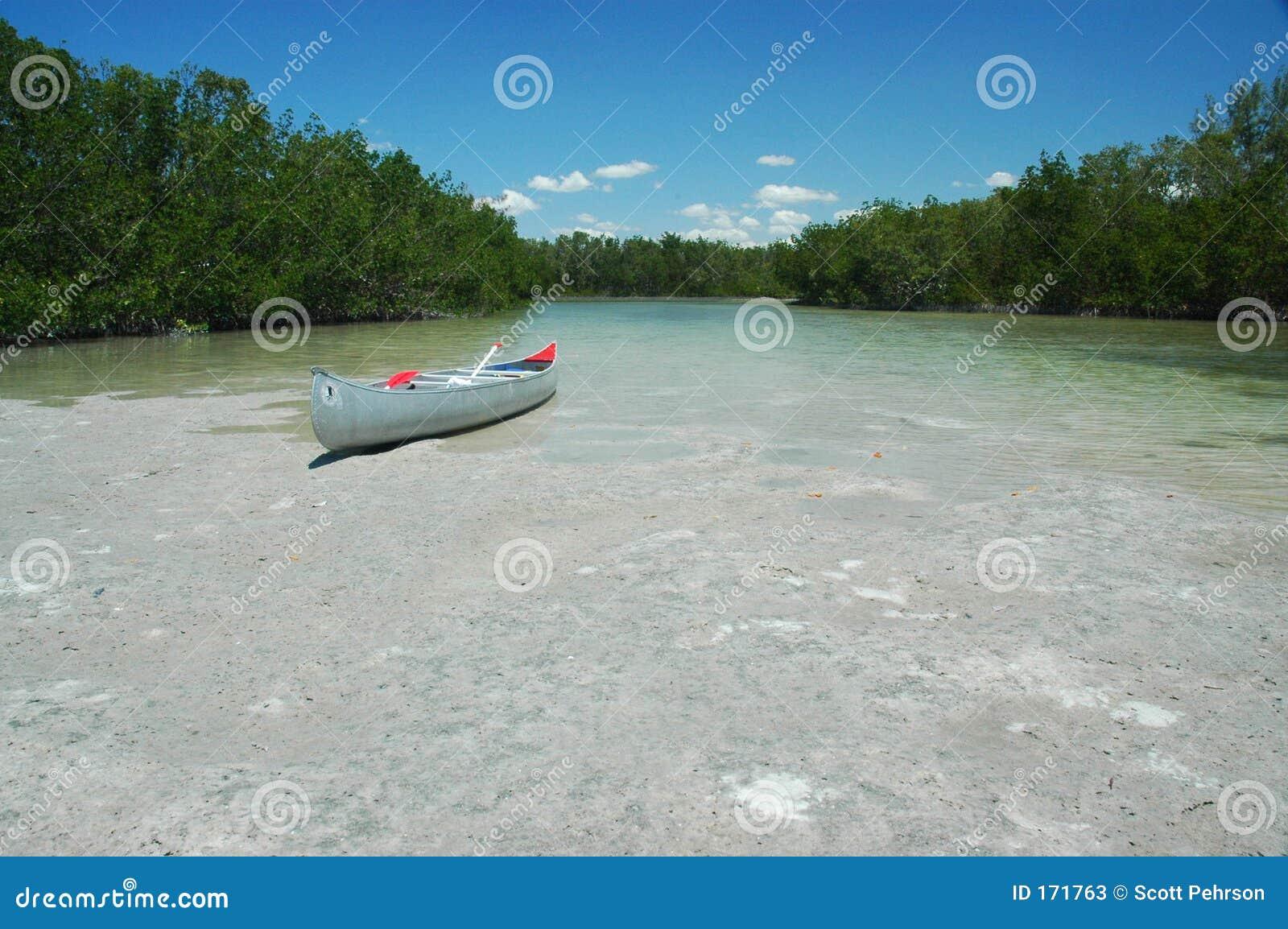 Beached Canoe