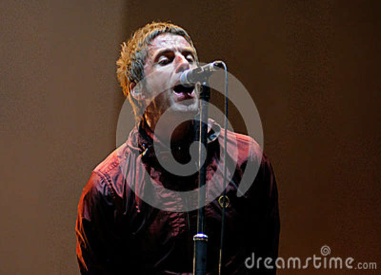Beady Eye band concert performance at FIB (Festival Internacional de Benicassim) 2013 Festival