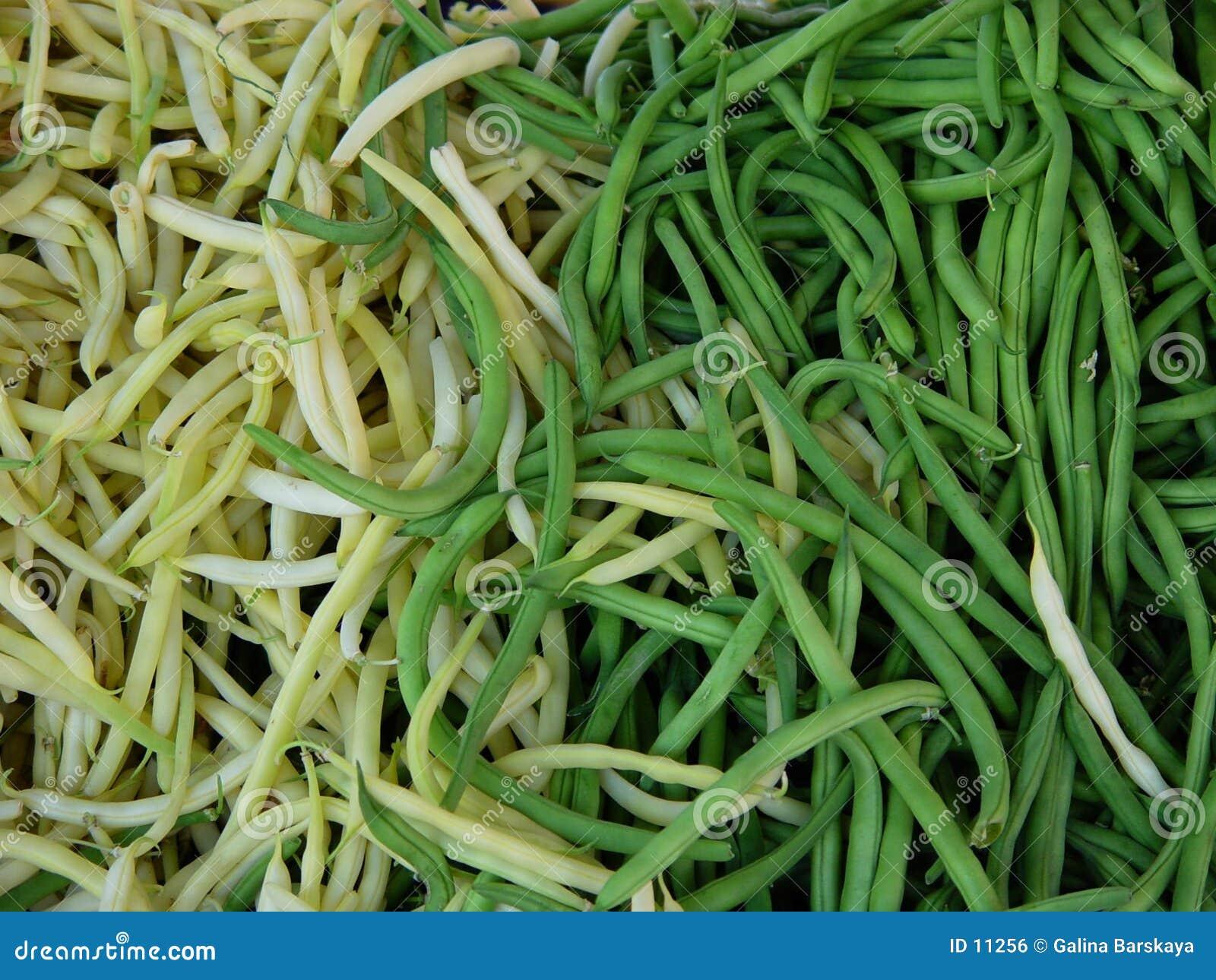 Bean string