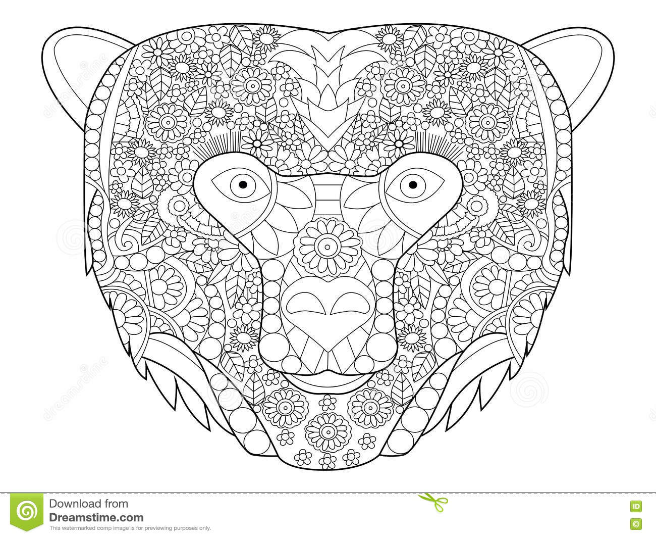 Bear head coloring vector for adults stock vector image for Bear head coloring page