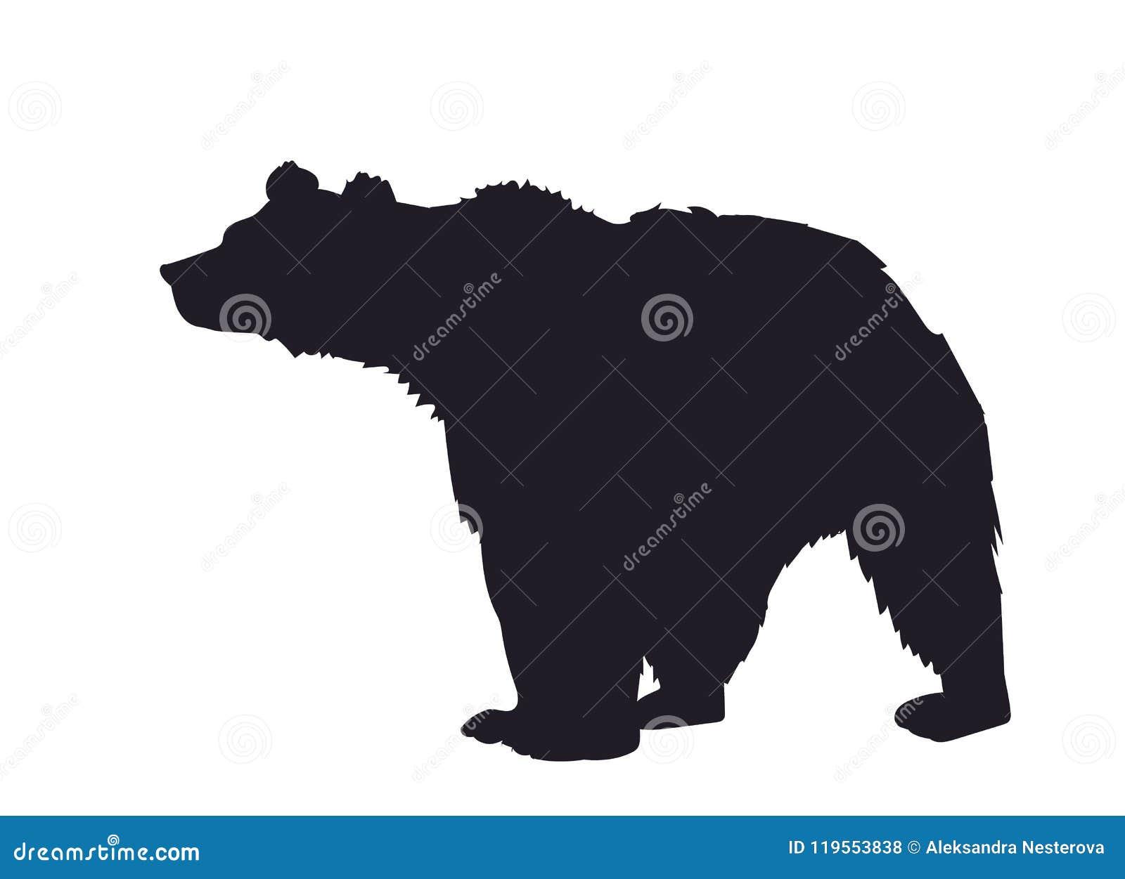 Bear, silhouette, vector