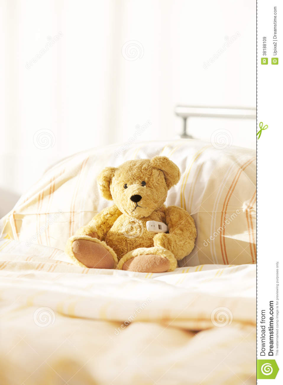 Bear Teddy Hospital Bed Royalty Free Stock Images   Image  38188109