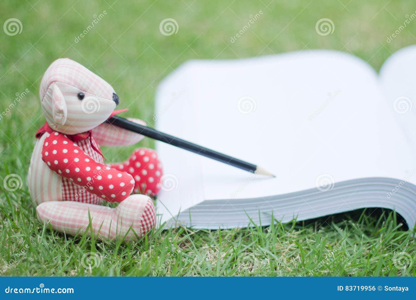 Bear Write The Book Stock Photo