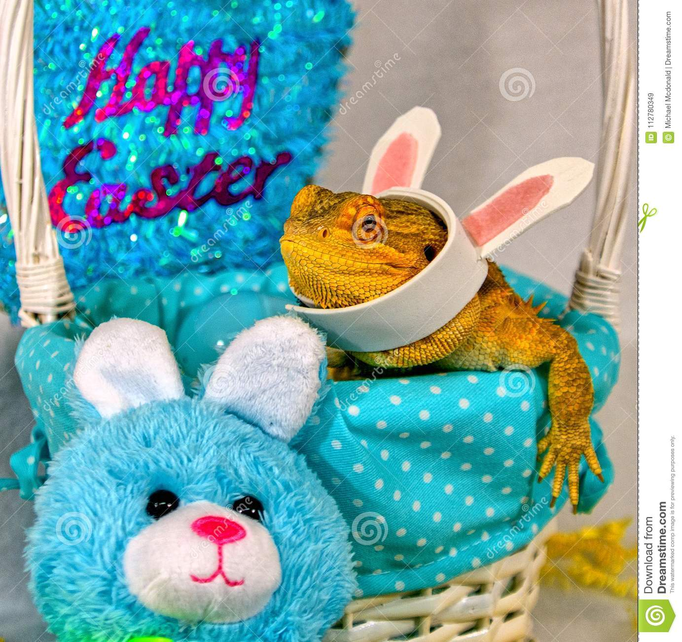 Bearded dragon and rabbit celebrating easter stock image image of download bearded dragon and rabbit celebrating easter stock image image of close decor thecheapjerseys Gallery
