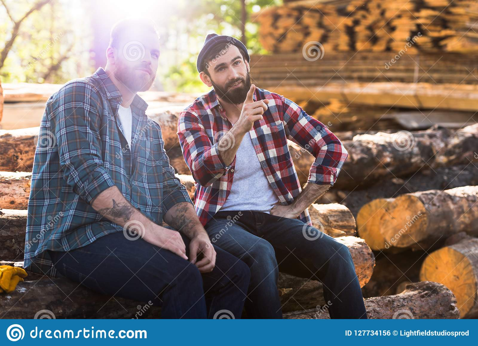 9a6fb6b1cb3 Bearded Lumberjack Pointing By Finger To Sitting Colleague Stock ...