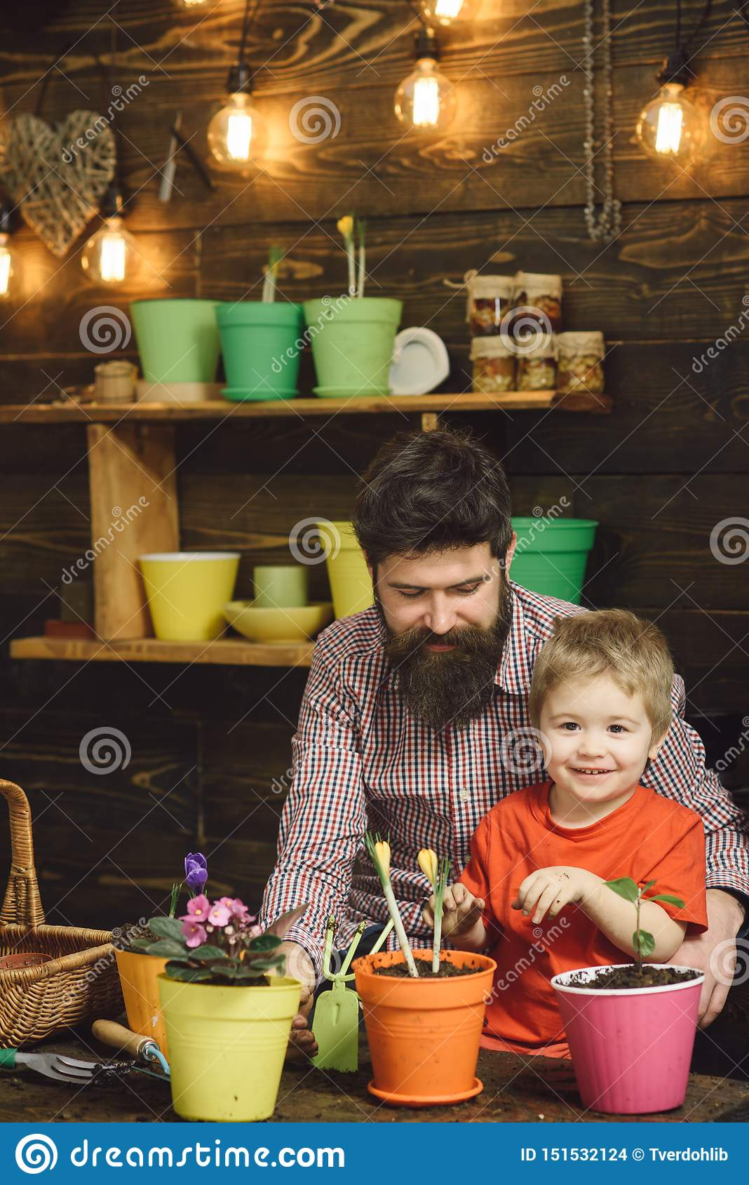 Bearded man and little boy child love nature. Family day. Greenhouse. happy gardeners with spring flowers. Flower care