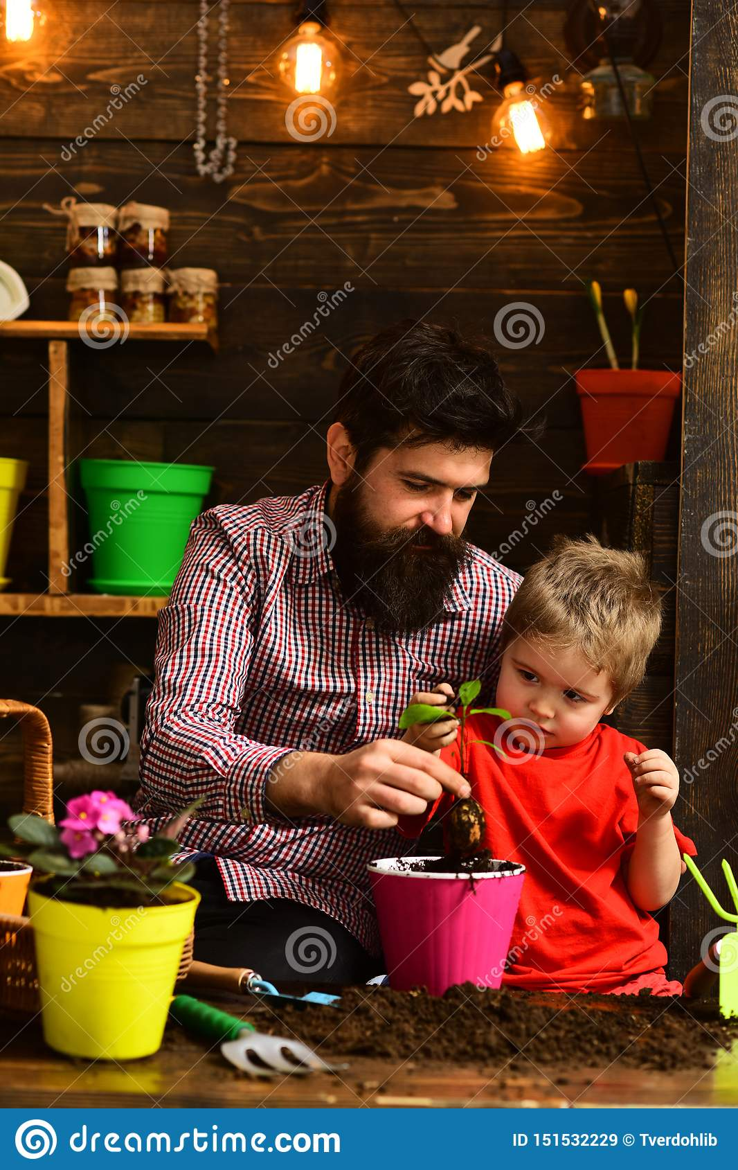Bearded man and little boy child love nature. happy gardeners with spring flowers. Father and son. Family day
