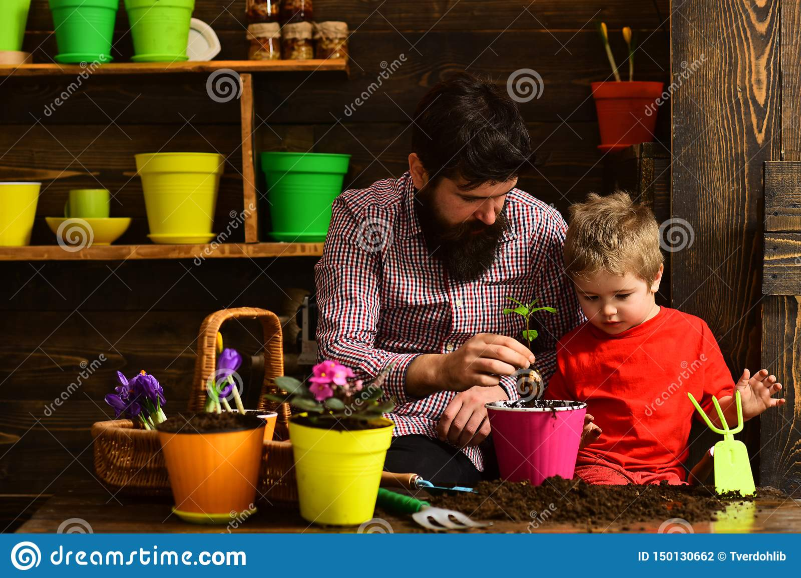 Bearded man and little boy child love nature. happy gardeners with spring flowers. Flower care watering. Soil