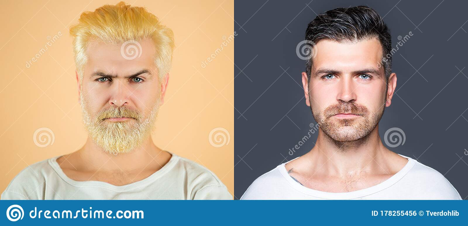 Bearded Man Set. Hair And Beard Hair Coloring. White Hair Color ...