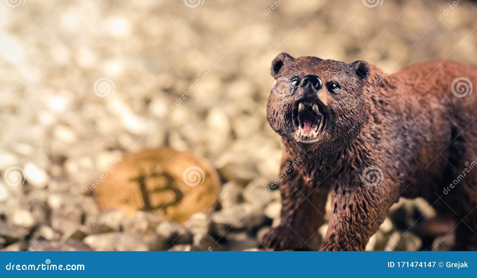 bear crypto market