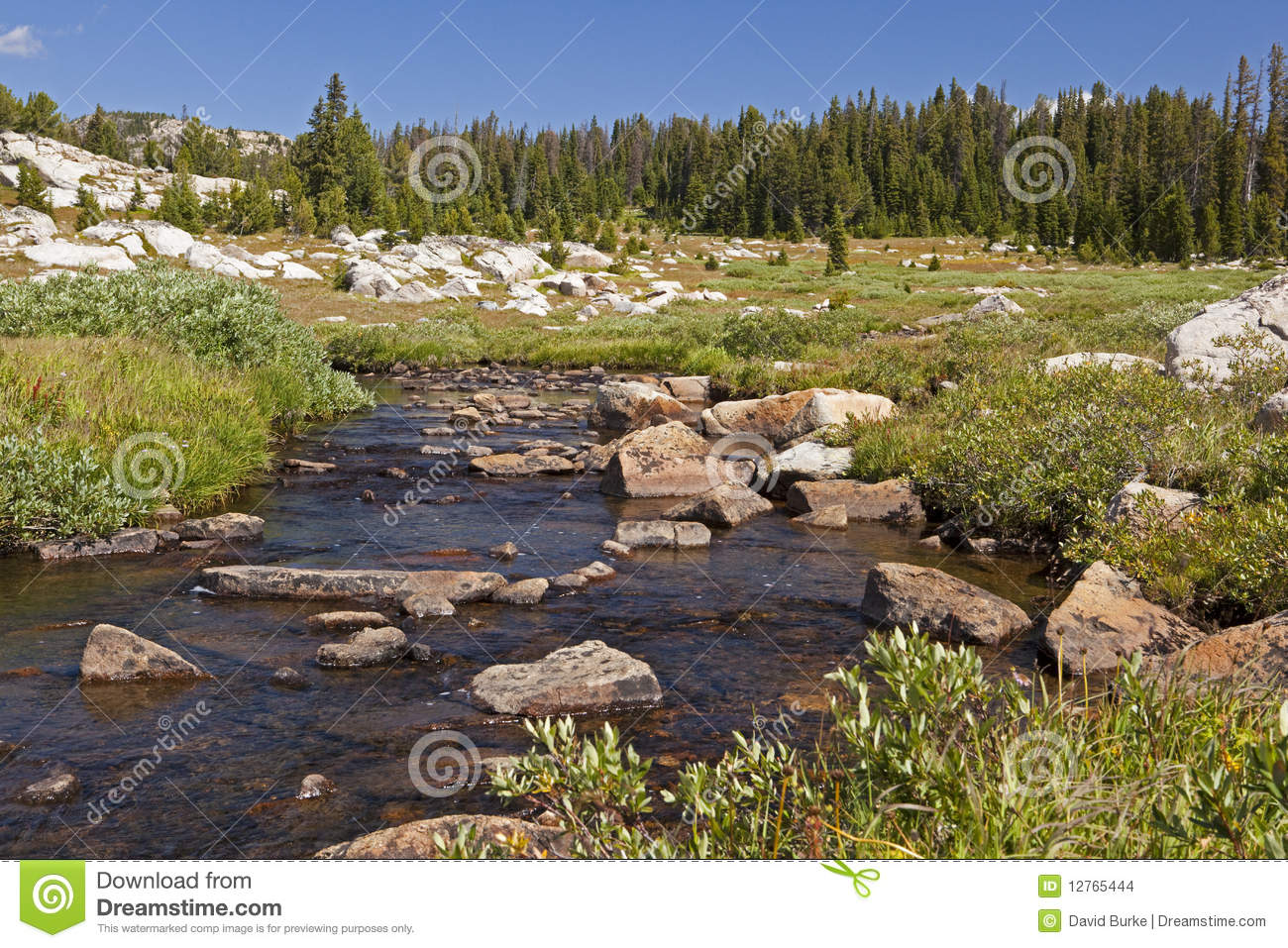 Beartooth mountains alpine fishing stream stock images for Fish and stream