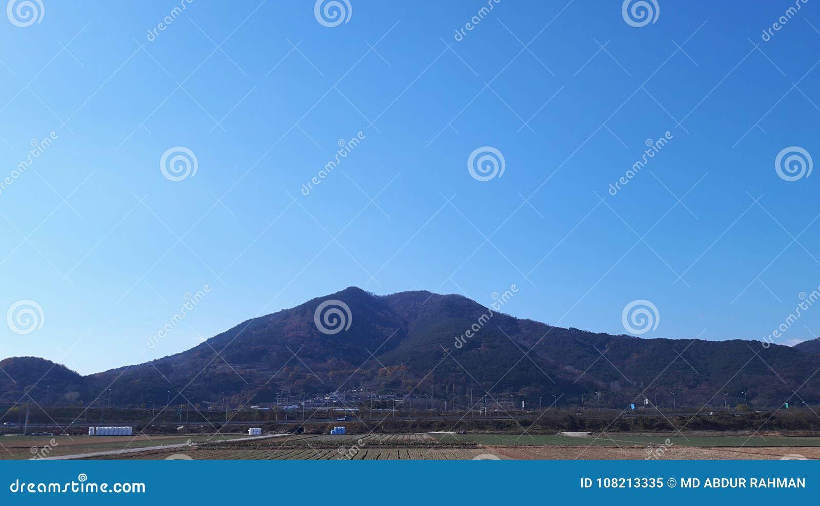 Beaty delle colline