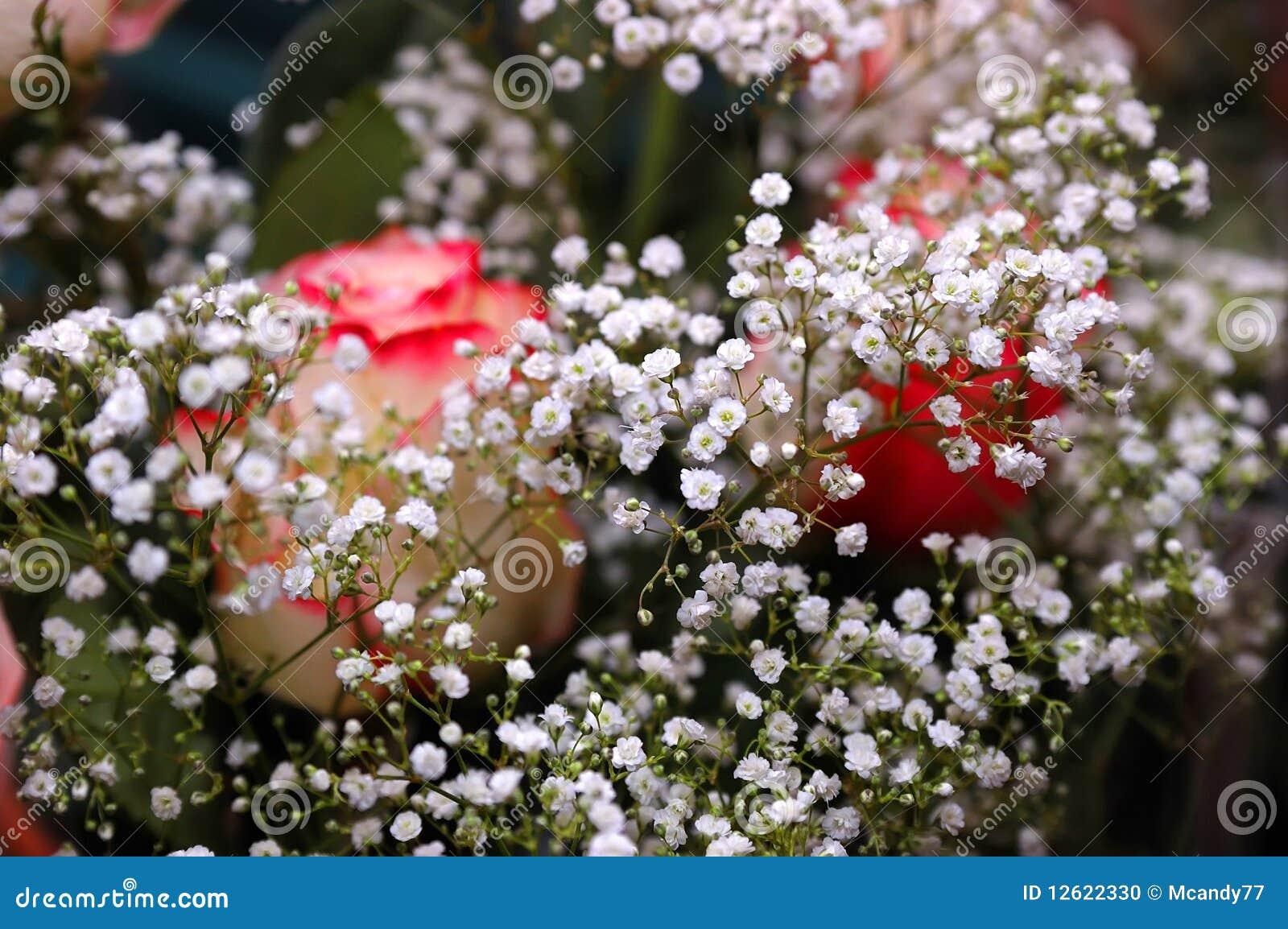 beau bouquet des fleurs blanches et des roses photo stock. Black Bedroom Furniture Sets. Home Design Ideas
