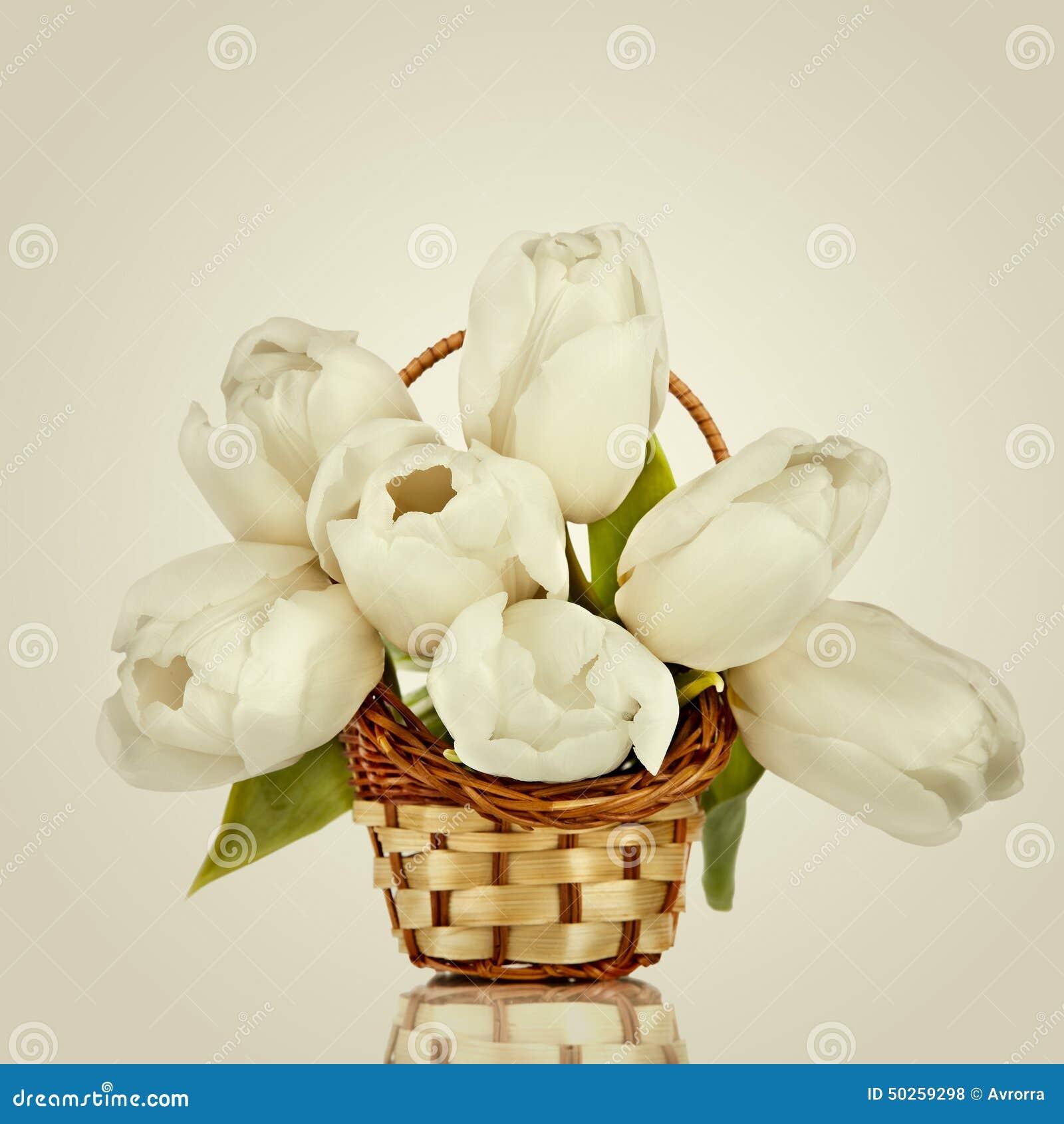 beau bouquet des fleurs tulipes blanches photo stock. Black Bedroom Furniture Sets. Home Design Ideas