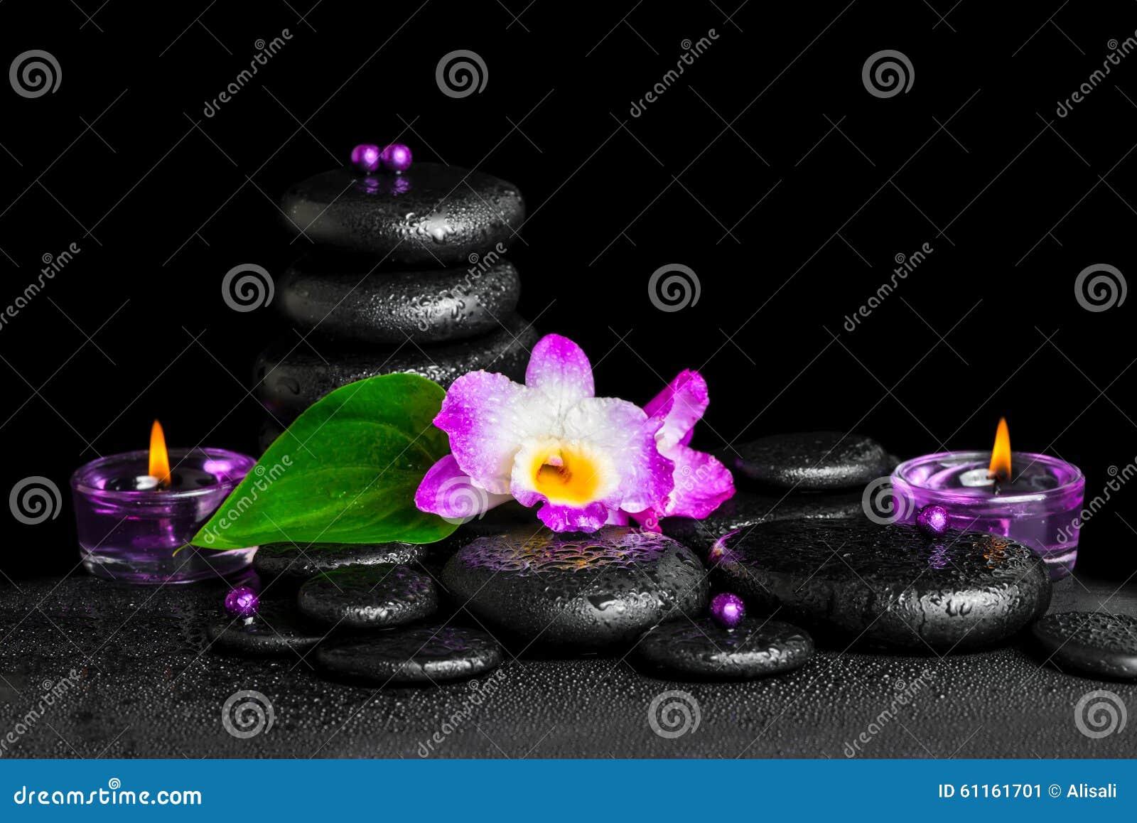Beau concept de station thermale de dendrobium pourpre d orchidée avec la rosée, pyra