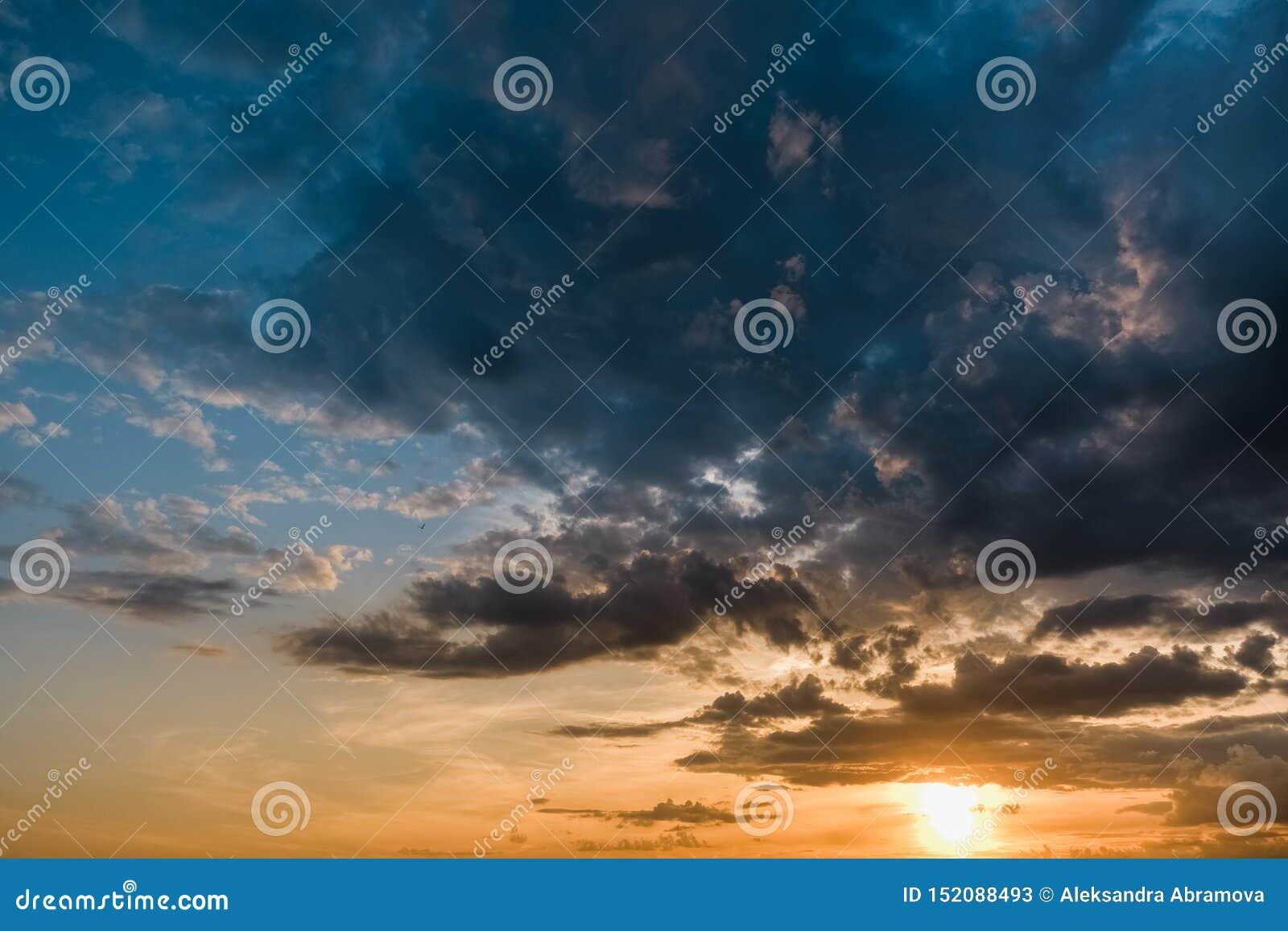 Beau coucher du soleil coloré avec des cumulus avec l oiseau