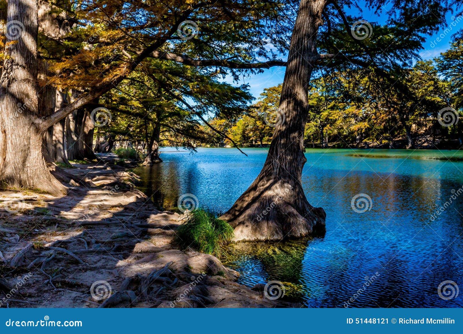 Beau feuillage d automne lumineux sur Crystal Clear Frio River
