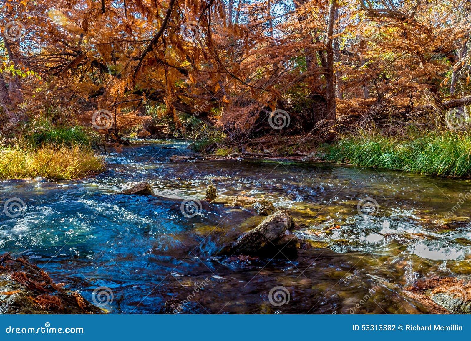 Beau feuillage d automne sur Guadalupe River, le Texas