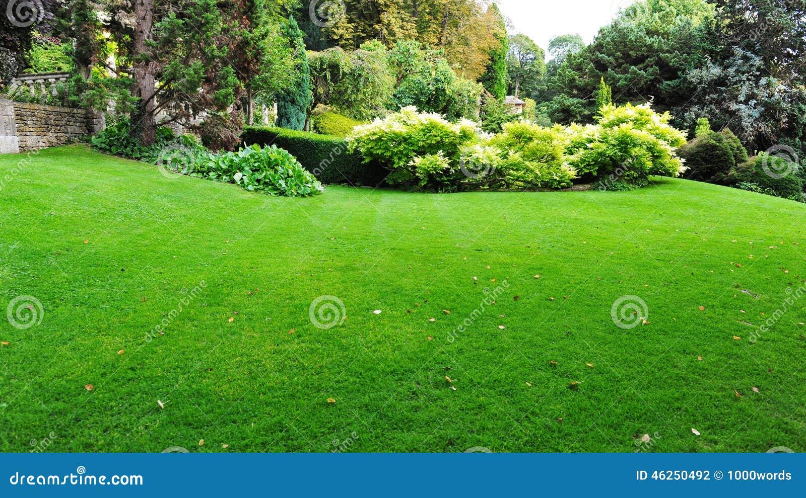Beau jardin photo stock. Image du grand, frais, vert ...