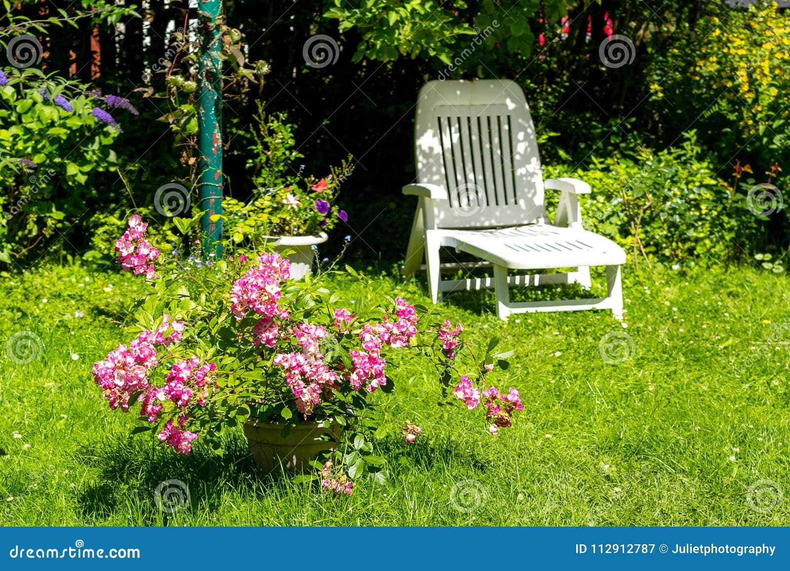 Jardin D'été Image stock Une Chaise Blanche Beau Avec Longue mOv8yNn0w