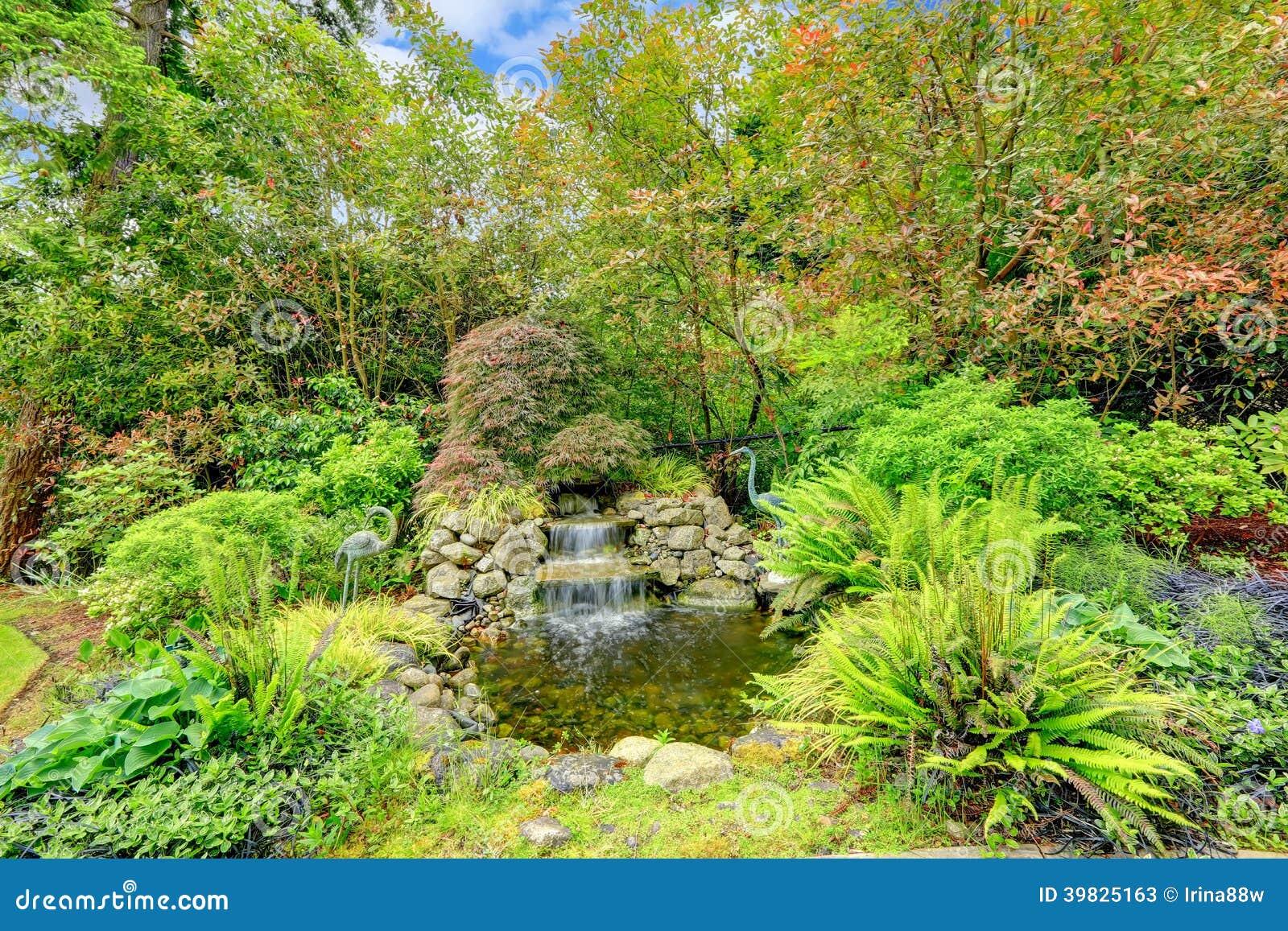 Photo Petit Jardin Exotique beau jardin exotique avec l'étang image stock - image du