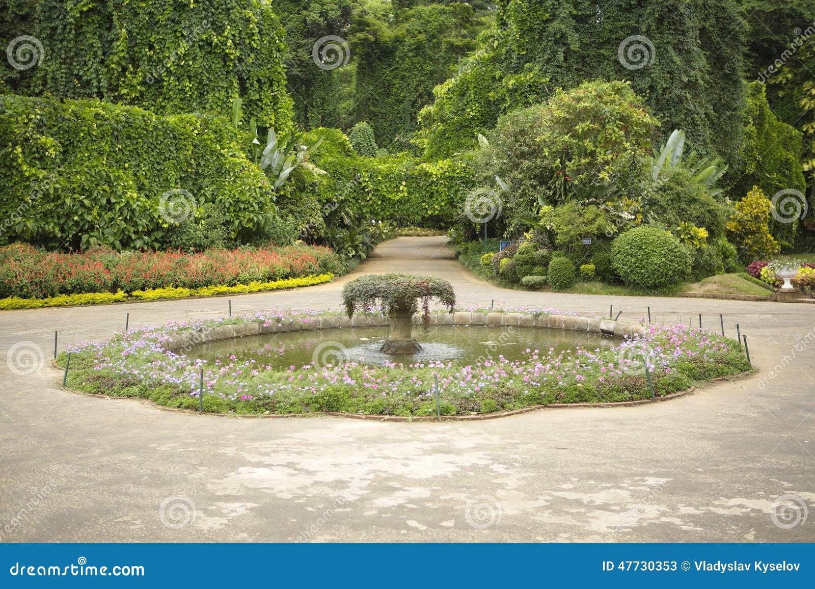 Beau jardin exotique avec la piscine d 39 eau image stock for Jardin 200m2 avec piscine