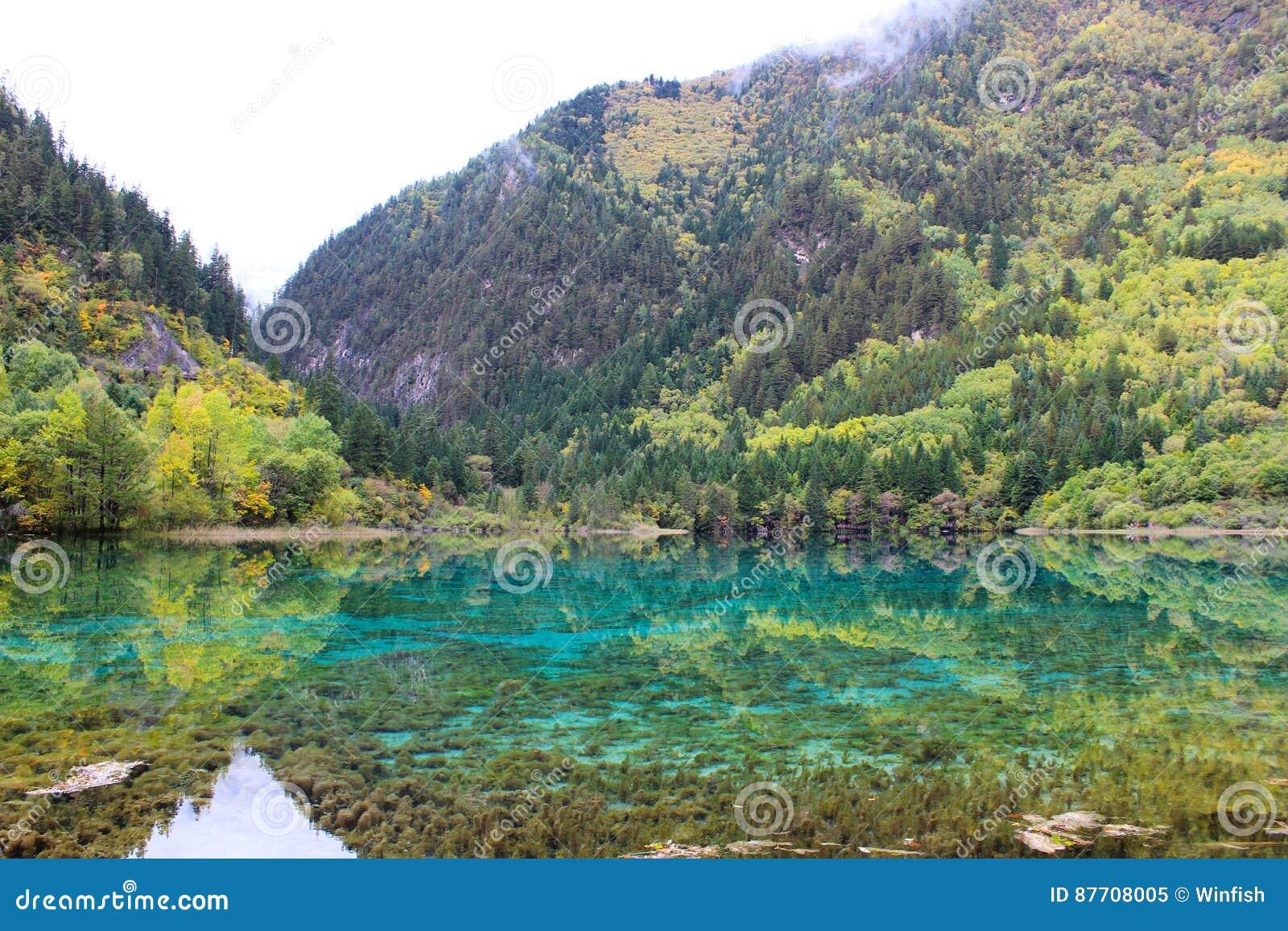 Beau lac bleu en montagnes