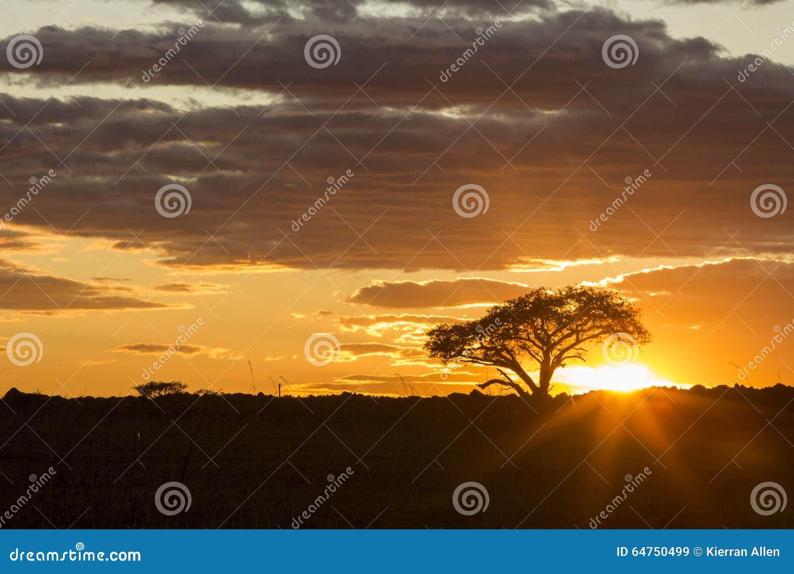 Beau lever de soleil coloré vibrant