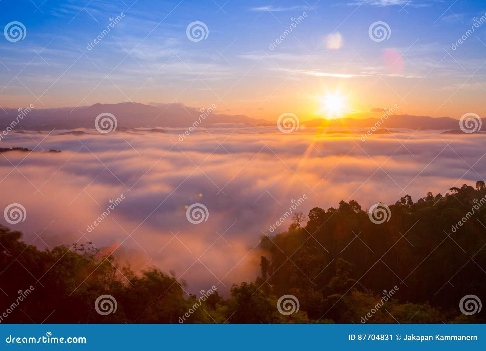 Beau lever de soleil pendant le matin au-dessus de la forêt tropicale brumeuse, longue photographie d exposition