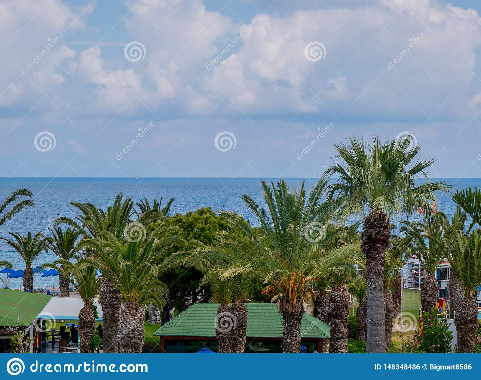 Beau littoral tropical avec de l eau les palmiers et bleu clair