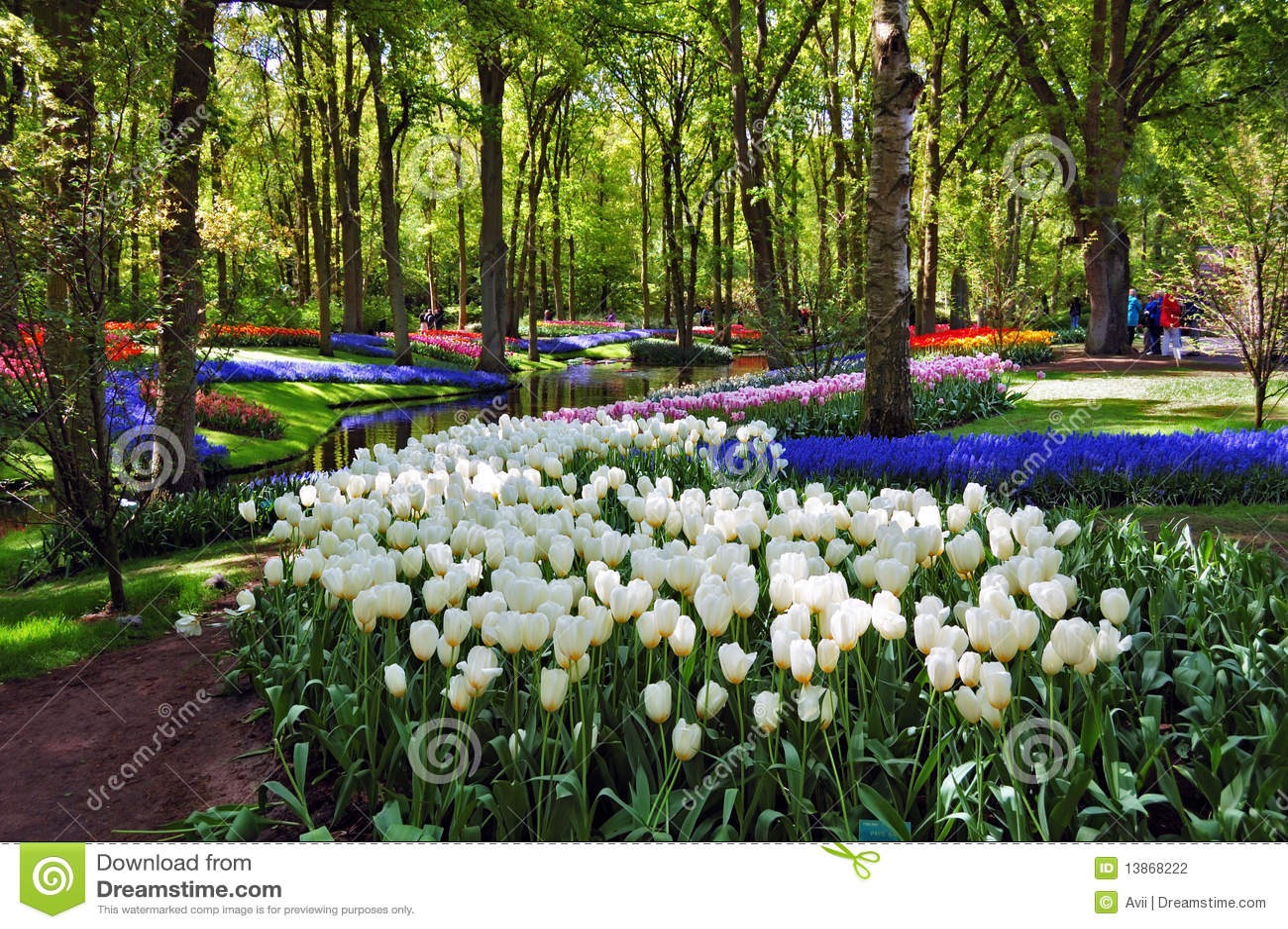 Beau matin ensoleill aux jardins de keukenhof for Aux jardins