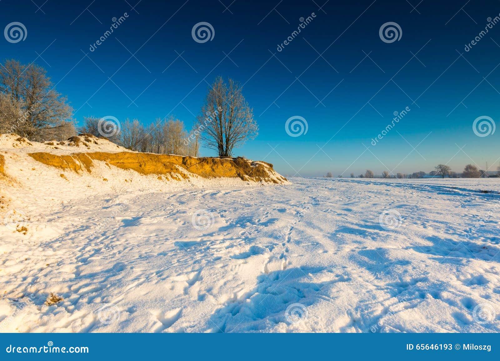 Beau matin froid sur la campagne neigeuse d hiver