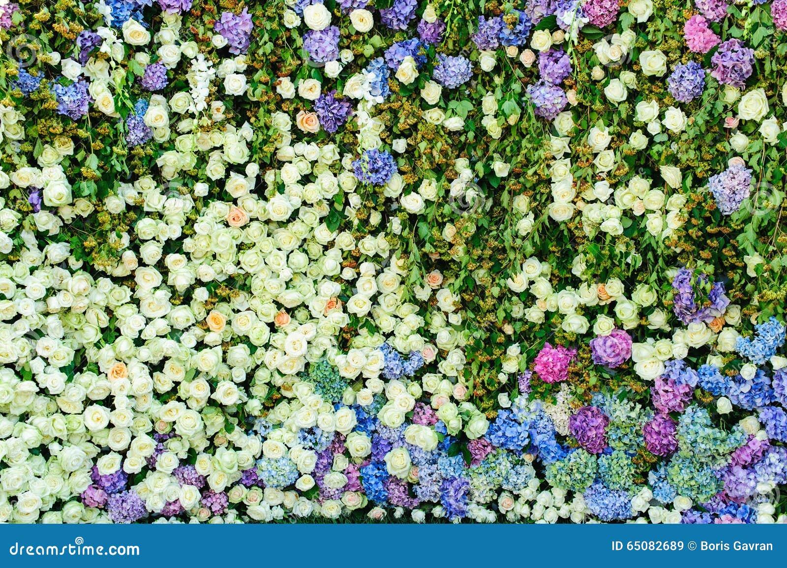 beau mur de fleurs image stock image du v nement pour 65082689. Black Bedroom Furniture Sets. Home Design Ideas