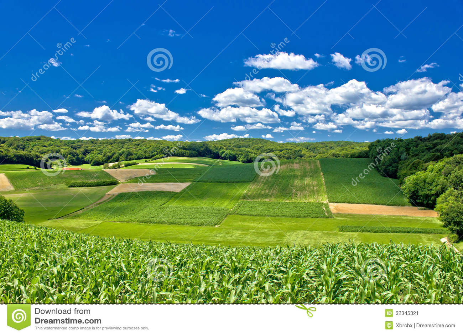 Beau paysage agricole vert en croatie image stock image for Paysage vert