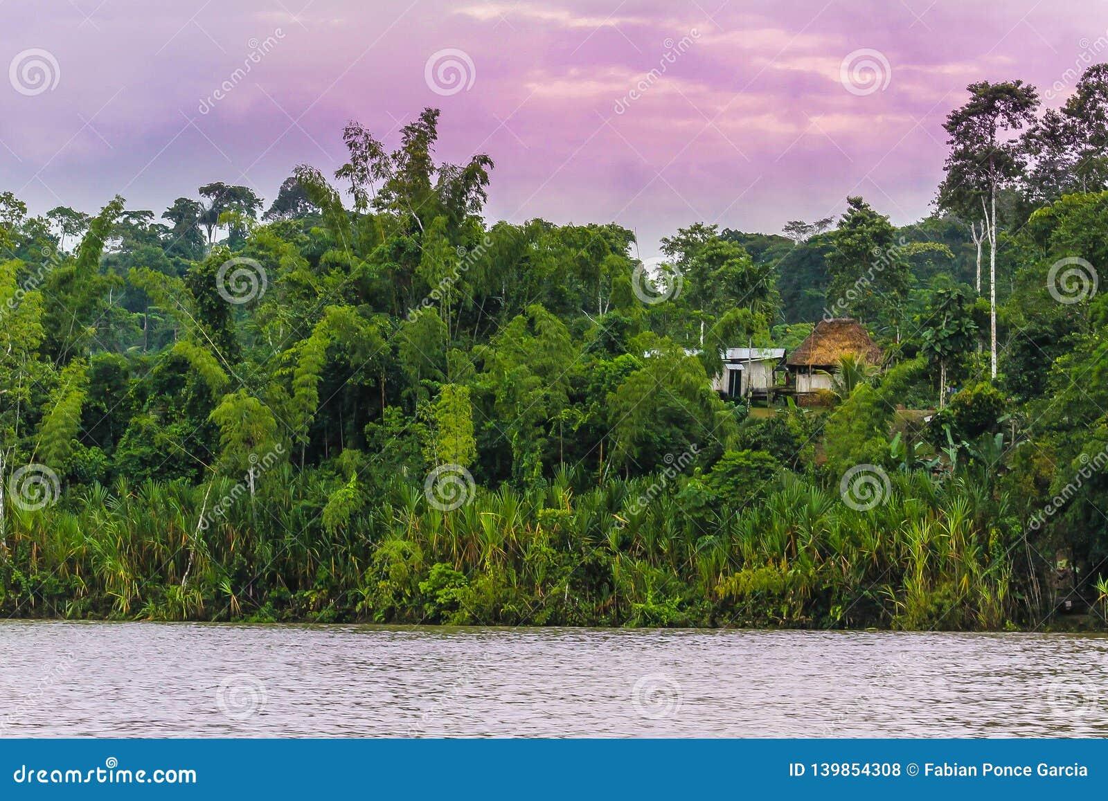 Beau paysage avec la rivière, la jungle et les huttes sous le ciel pourpre