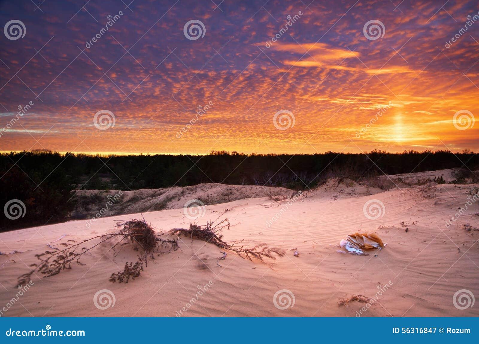 Beau paysage dans le désert