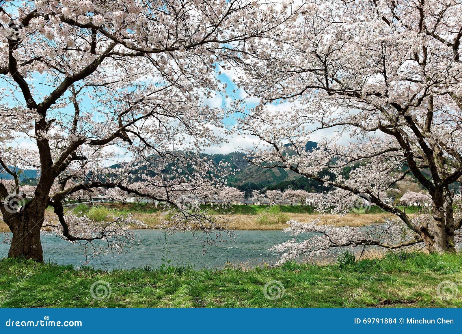 beau paysage de campagne japonaise idyllique dans le. Black Bedroom Furniture Sets. Home Design Ideas