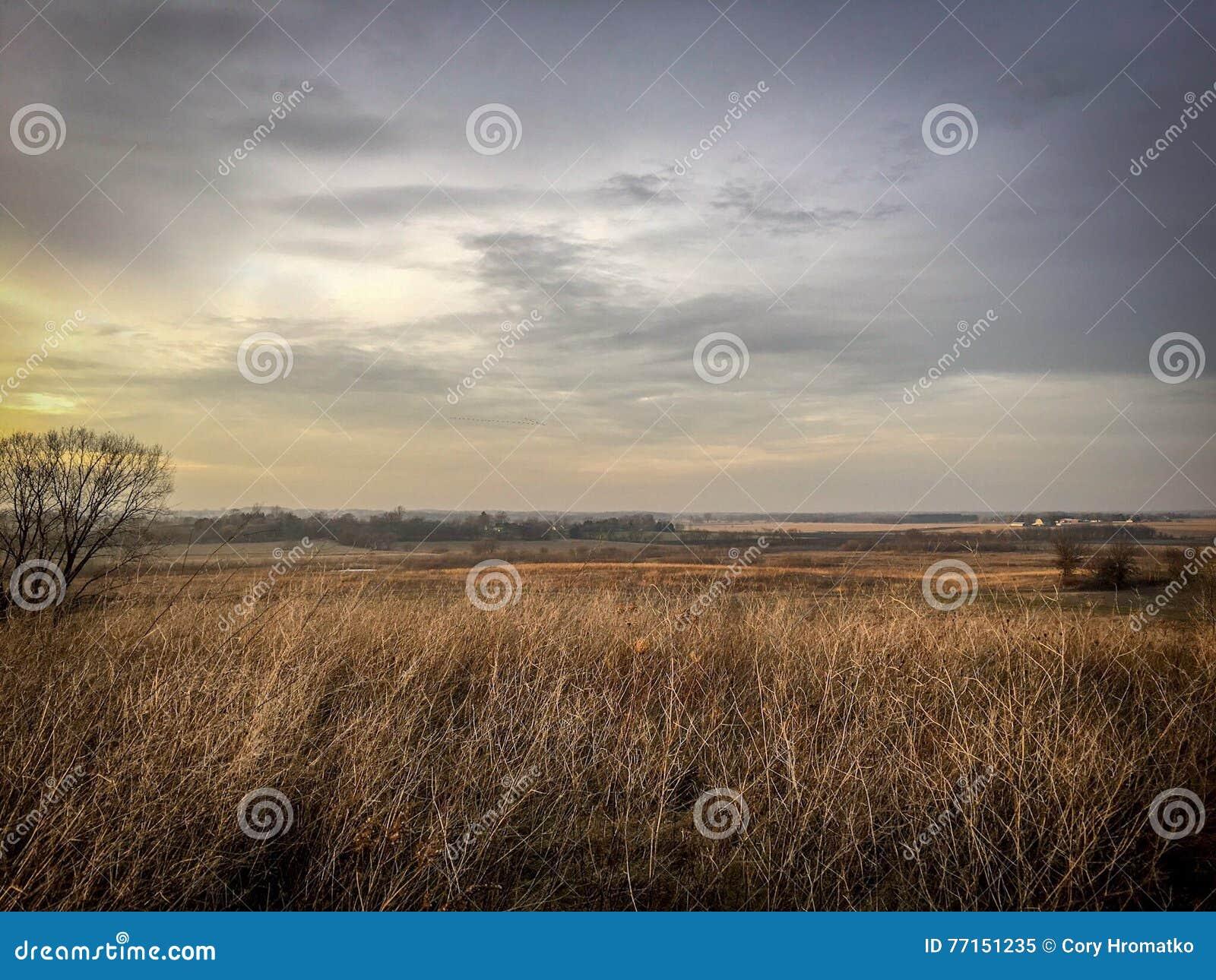 Beau paysage de chute de prairie