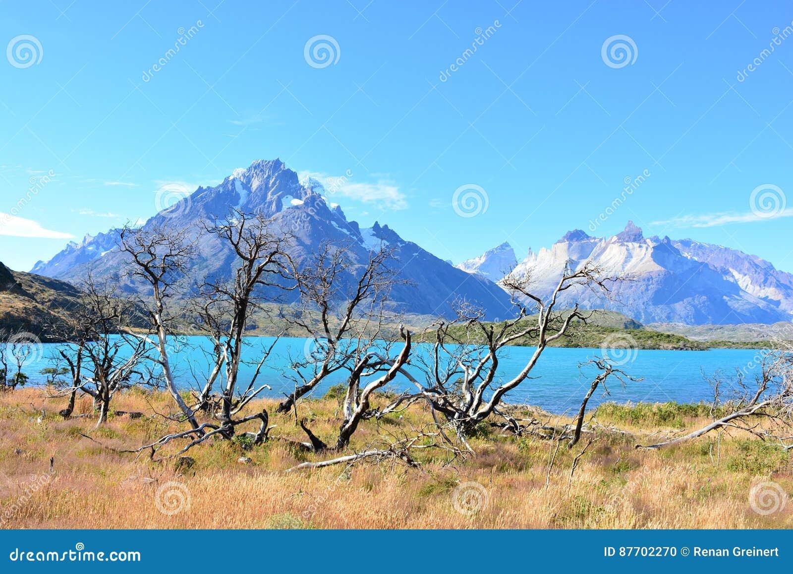 Beau paysage de parc national de Torres del Paine, Chili