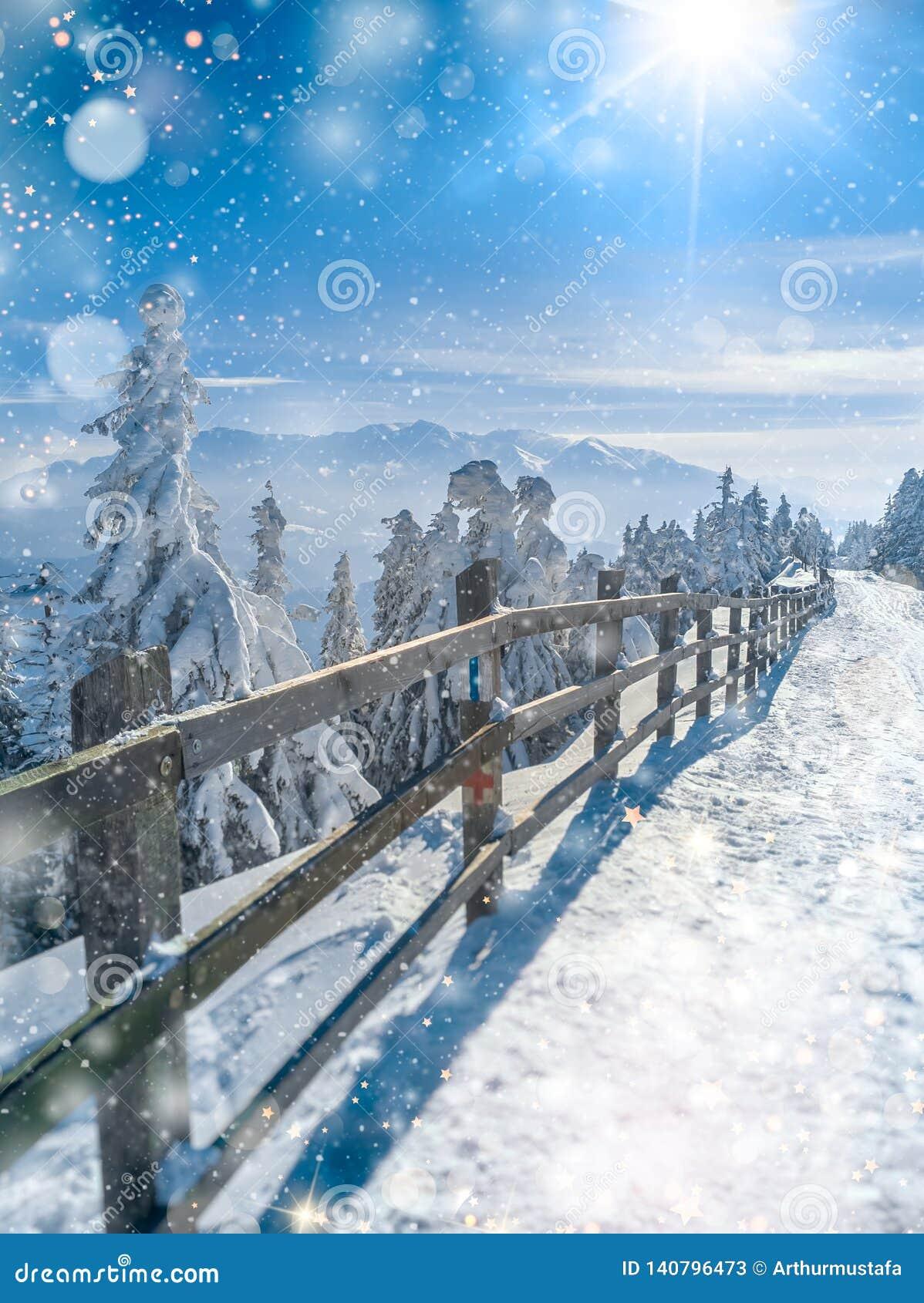Beau paysage du pays des merveilles d hiver Fond scénique de Noël avec les lumières molles de neige et de bokeh tombant au-dessus